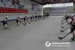 仿真冰球場冰雪進校園專用四季冰場