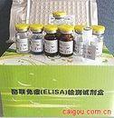 犬肿瘤坏死因子-α(TNF-α)ELISA试剂盒