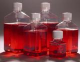 大肠杆菌显色培养基