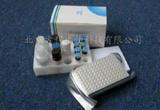 鸭γ干扰素(IFN-γ)ELISA试剂盒|检测价格 进口