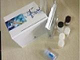 促胃液素受体ELISA试剂盒厂家代测,进口人(GsaR)ELISA Kit说明书