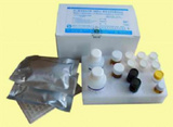 人抗风疹病毒IgG抗体(anti-RV IgG)ELISA试剂盒
