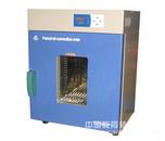 300℃程控鼓风烘箱(122L)-DHG-9140