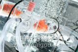 水生生物呼吸代谢测量系统
