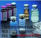 大鼠抵抗素(Resistin)ELISA试剂盒