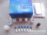 (SDS-聚丙烯酰胺凝膠電泳試劑盒)