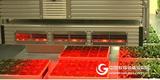 PlantScreen高通量荧光成像监测系统