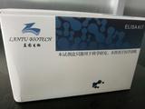 肝细胞生长因子ELISA试剂盒_小鼠HGF试剂盒_蓝图厂家优惠价