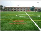 人造草坪籃球場
