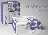 大鼠肿瘤蛋白p53(TP53) ELISA试剂盒