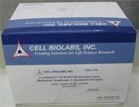 CAT过氧化氢酶活性测定试剂盒