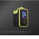 WK14-SKY8000烟气分析仪