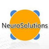 NeuroSolutions—神经网络仿真软件