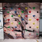地拓体育供应攀岩墙建造_室内木质攀岩板批发