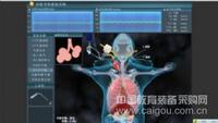 多因素對呼吸系統功能的影響