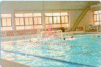 水球網系列