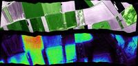 Ecograph-Flu 群落光合生理遙測系統