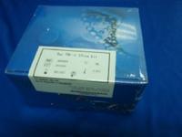 牛肿瘤特异性抗原(TSA) ELISA试剂盒