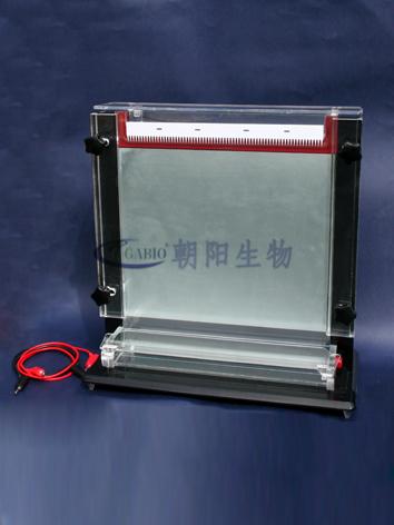 单板测序电泳仪