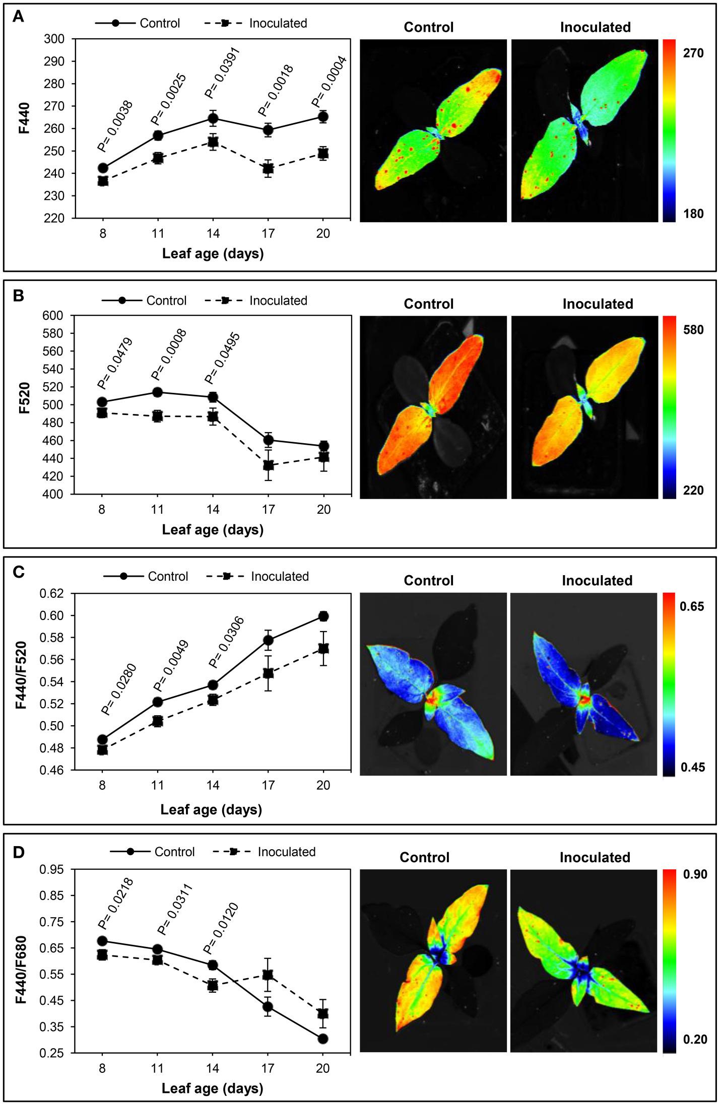 光谱成像技术应用于植物病害早期检测