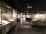 第43个国际博物馆日,博物馆如何保护传统走向未来?