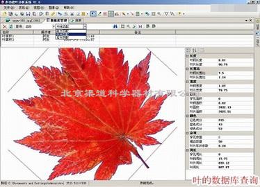 LA-S多功能植物图像分析仪