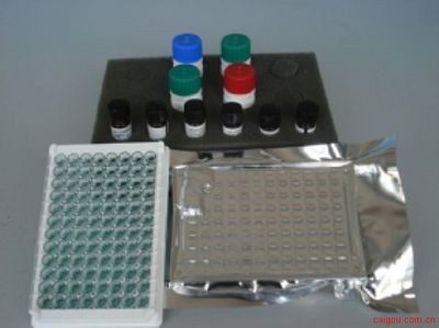 大鼠6-keto-PGF1a,6酮前列腺素F1aElisa试剂盒