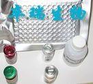 人脱氢表雄酮硫酸酯(DHEA-S)Elisa试剂盒
