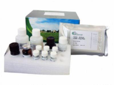 小鼠补体片断5a(C5a)ELISA试剂盒