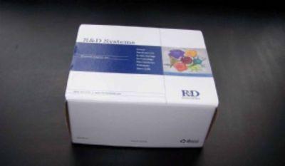 小鼠α羟基丁酸脱氢酶(αHBDH)ELISA试剂盒