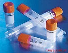 鼠疫耶尔森氏菌F1荚膜蛋白(C端)