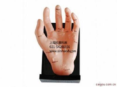 按摩手模型,保健手模型,手部反射区模型