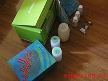猪二胺氧化酶(DAO)ELISA试剂盒