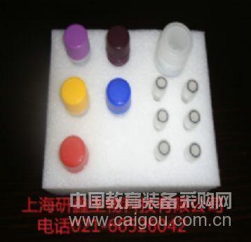小鼠 GCP-2 ELISA Kit