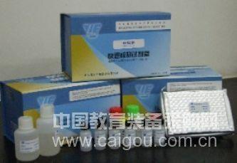 猪钙调磷酸酶(CaN)ELISA试剂盒