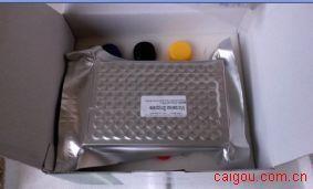 鸭病毒性肠炎病毒(DEV)ELISA Kit
