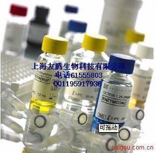 p38 alpha  ELISA试剂盒