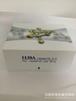 大鼠TNF-a ELISA试剂盒