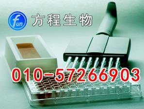 小鼠膜铁转运蛋白ELISA Kit价格,FPN进口ELISA试剂盒说明书北京检测