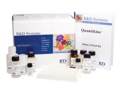 人羟基胶原吡啶交联(OH-PYD)ELISA试剂盒