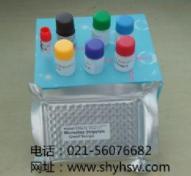 TNF-alpha/TNFSF1A  ELISA试剂盒