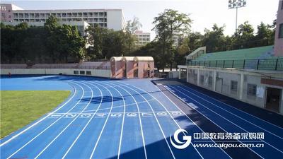 预制橡胶跑道-唐道系列 广州同欣 橡胶运动跑道厂家