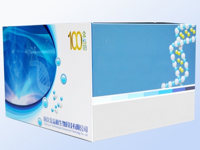 小鼠胰淀素(Amylin)ELISA试剂盒[小鼠胰淀素ELISA试剂盒,小鼠胰Amylin ELISA试剂盒]