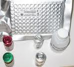 芋头花叶病毒(Dasheen Mosaic Virus) ELISA试剂盒
