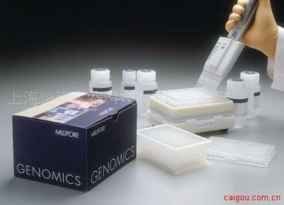 人硫酸软骨素ELISA试剂盒