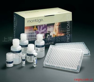 人淋巴细胞功能相关抗原2 ELISA试剂盒