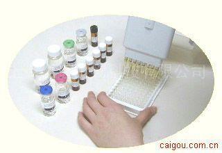 小鼠髓过氧化物酶特异性抗中性粒细胞胞质抗体IgG ELISA试剂盒