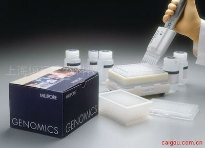 大鼠血管内皮细胞粘附分子1 ELISA试剂盒