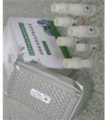 兔抗平滑肌抗体试剂盒/兔子ASMA  ELISA试剂盒