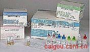 血吸虫抗原金标测试盒